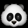Panda-Face-Snapchat-Trophy